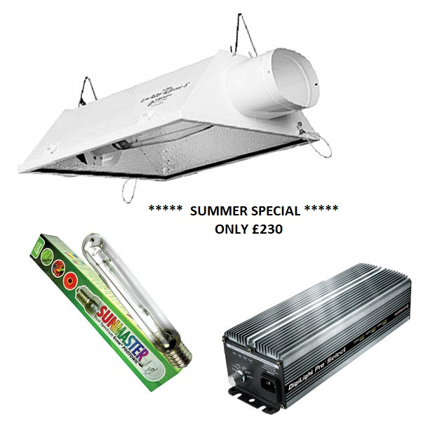 Low Rider Air Cooled Light Kit