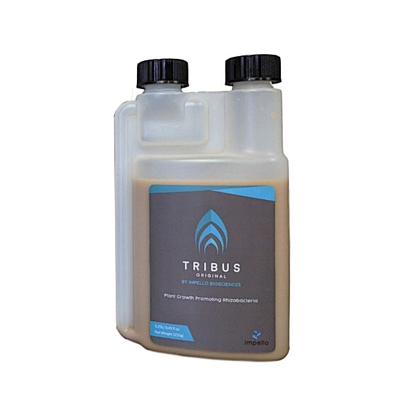Tribus Original 250ml