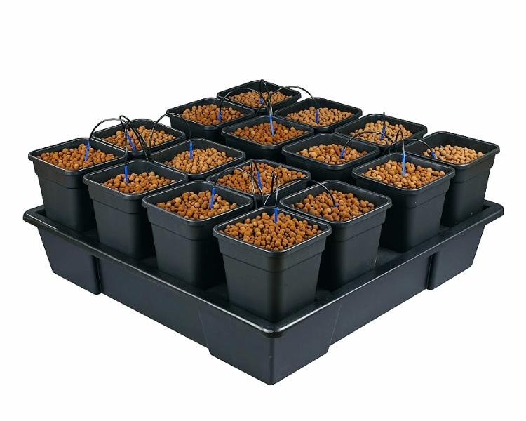 Wilma XXL 16 – 11 Litre Pots (AW416V2)