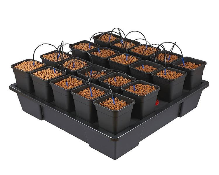 Wilma XXL 20 – 6 Litre Pots (AW420V2)
