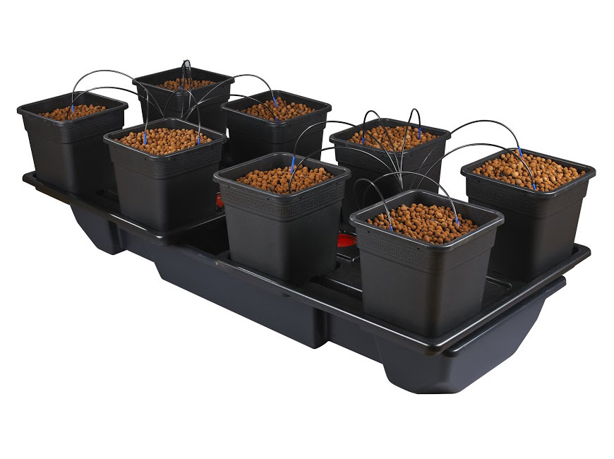 Wilma 8 XL Wide – 25 Litre Pots (AW718V2)
