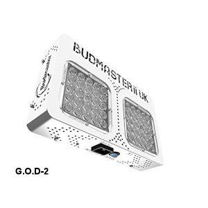Budmaster II Osram Gold Delux-4935