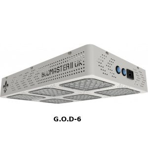 Budmaster II Osram Gold Delux-4937