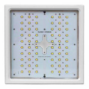 Plessey Hyperion White Spectrum LED -5076