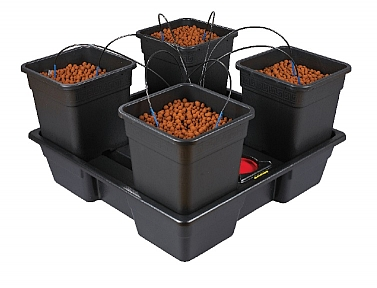 Wilma XL 4 – 25 Litre Pots (AW314V2)